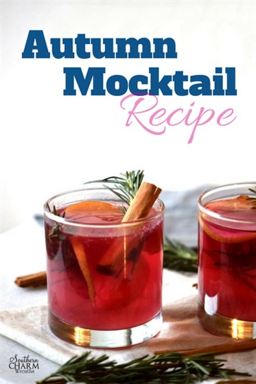 Warm autumn mocktail recipe using apples and cranberries by www.southerncharmwreaths.com/blog