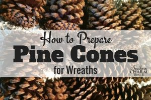 How-To-Prepare-Pine-Cones-for-wreaths