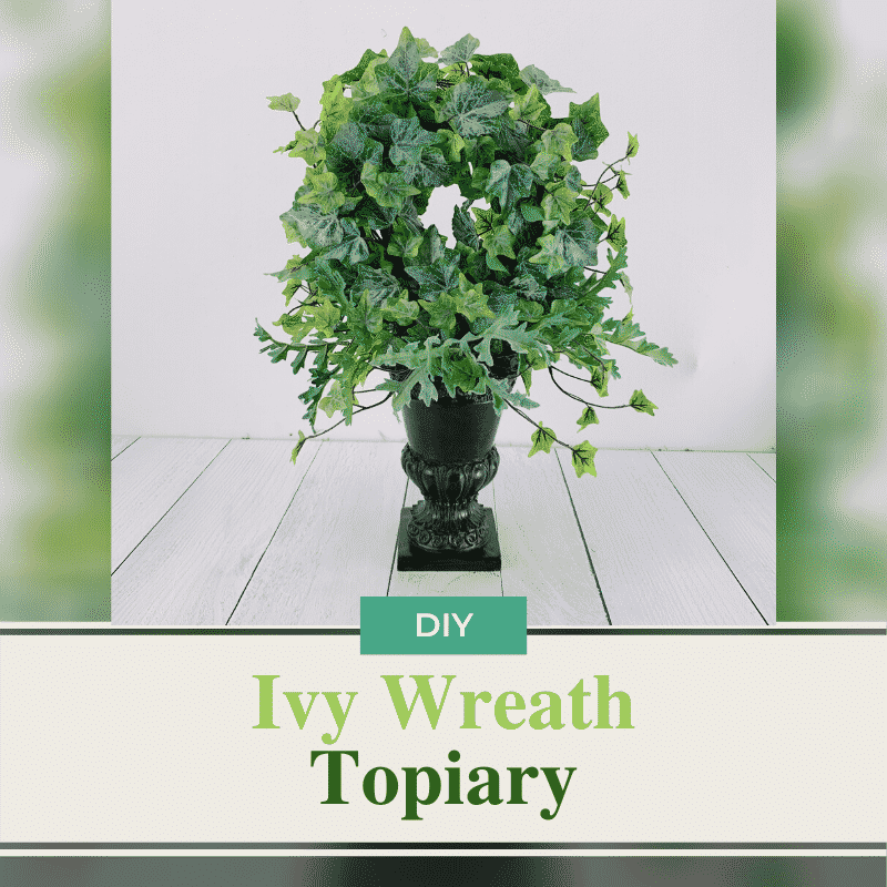 ivy wreath topiary in a black container